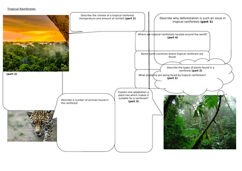 AQA Living World - Tropical Rainforests knowledge organiser