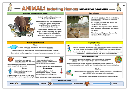 Year 2 Animals Including Humans Knowledge Organiser!