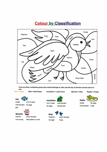 Colour by Classification