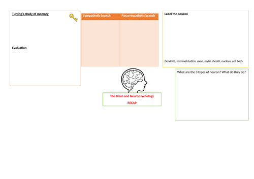 GCSE Psychology- AQA- Brain and Neuropsychology revision