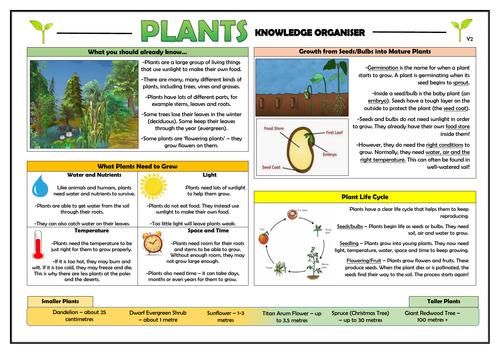 Year 2 Plants Knowledge Organiser!