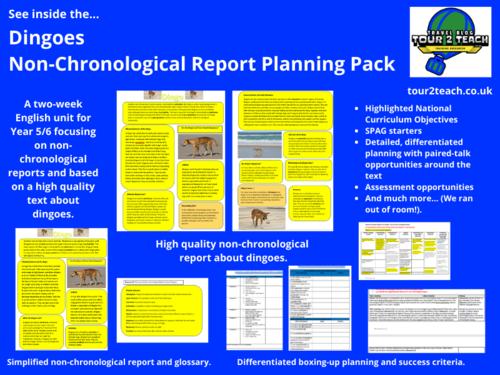 Non-chronological Report Planning: Year 5/6: Australian Animals: Dingo