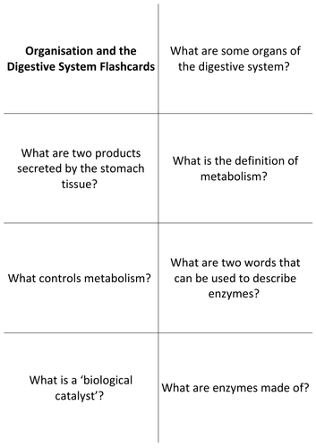 GCSE Biology Revision Flashcards: Organisation and the Digestive System