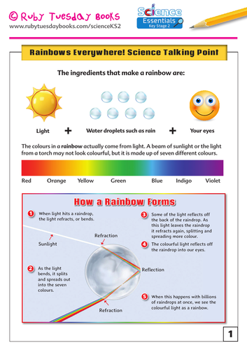 Rainbows Everywhere! Science Talking Point and Experiment