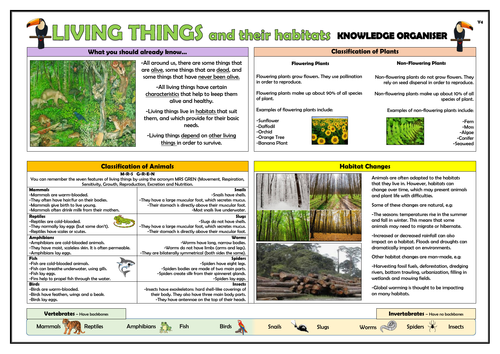 Year 4 Living Things and their Habitats Knowledge Organiser!
