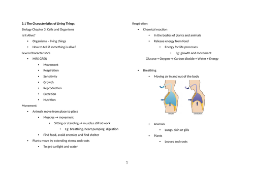 Notes: Cambridge Checkpoint and Beyond - Biology Secondary 1 (Year 7) Chapter 3 Cells and Organisms