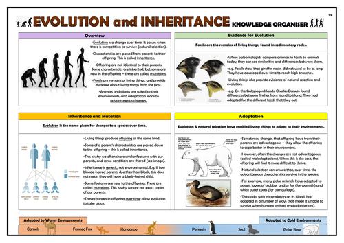 Year 6 Evolution and Inheritance Knowledge Organiser!