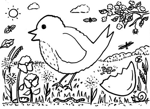 Spring Robin Colouring Sheet