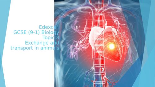 Edexcel  GCSE (9-1) Biology, Topic 8