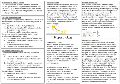 AQA Biopsychology A Level Psychology Revision Sheer