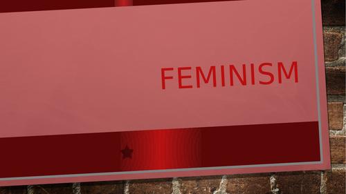 Edexcel A Level politics Feminism