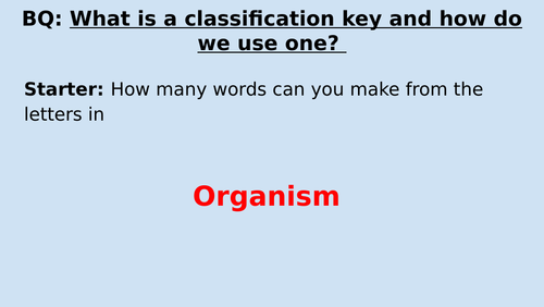 KS2 Classification - Using Classification keys