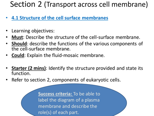 AQA AS Biology Section 2_Transport across cell membrane