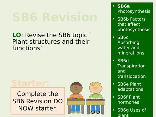 Edexcel SB6/CB6 Teacher Led Revision Lesson
