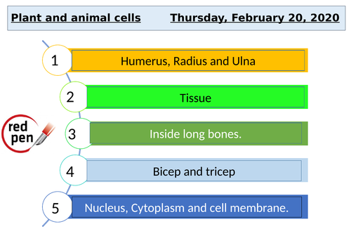 KS3 Science Cells