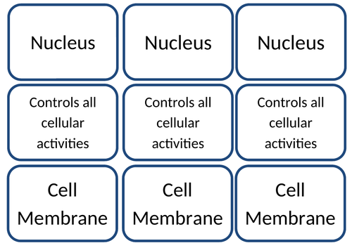 Cell Structure - Snap! Cards