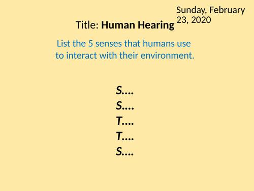 KS3 Human Hearing