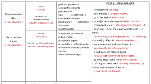 NEW GCSE FRENCH - Ideal Partner - Sentence Builder and Narrow Reading