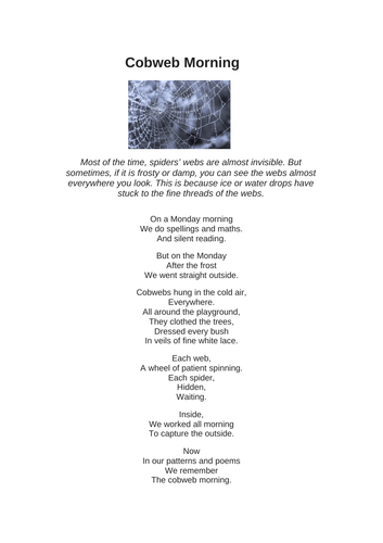 Cobweb Morning poem and SAT style questions