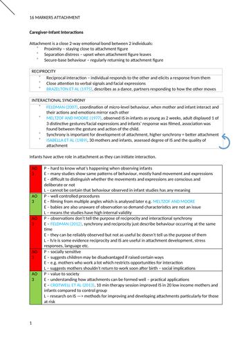 AQA Psychology Social Influence Essay Plans