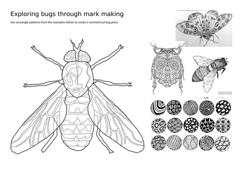 Bugs - Cover worksheets