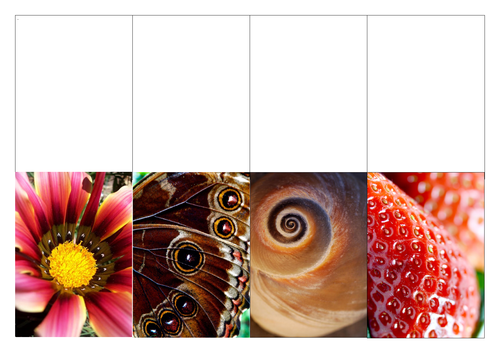 Natural Forms - Cover worksheets