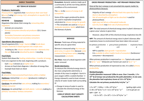 AQA A LEVEL BIOLOGY - Energy and Ecosystems Revision
