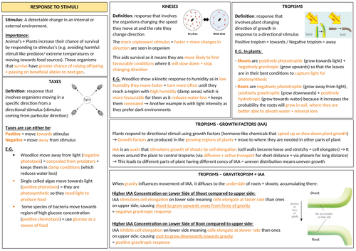 AQA A-LEVEL BIOLOGY - Response To Stimuli Revision