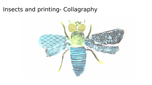 Collagraph Insects