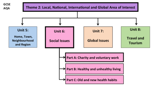 Social Issues- Unit 6- GCSE French