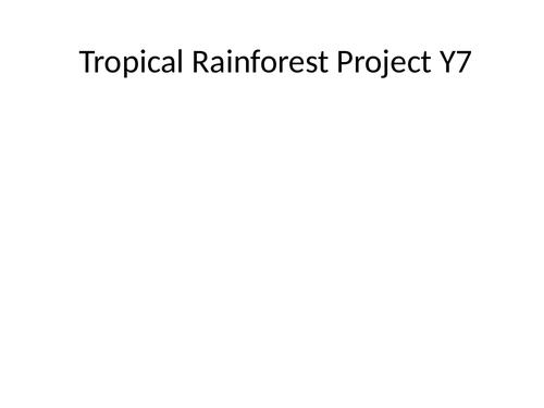Tropical Rainforest Project KS3