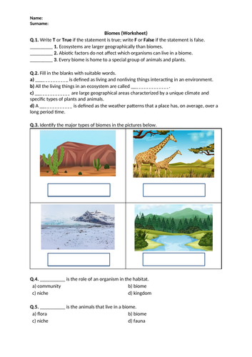 Distance Learning | Biomes - Worksheet