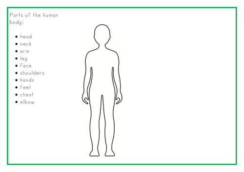 Y1 - Identify, name and label parts of the human body