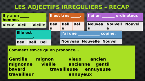 Irregular adjectives oral activities French