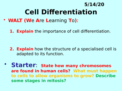 Cell Differentiation PPT - GCSE Biology