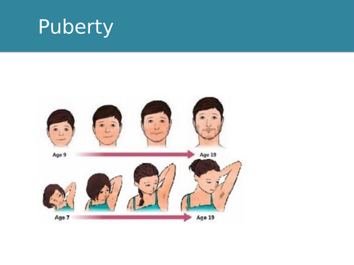 Emotions in Puberty Remote/Home Learning