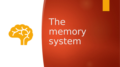 AQA A Level PE - The memory system