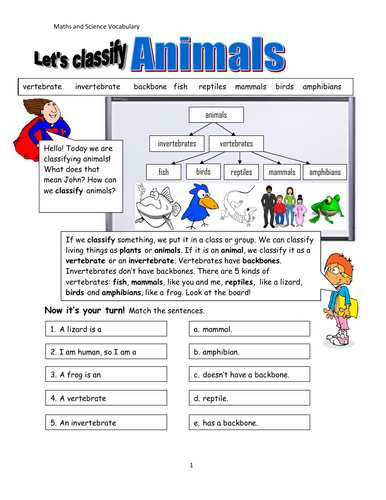 Living Things! Classification of Animals