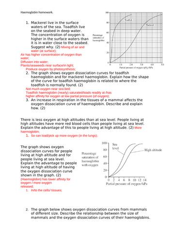 Haemoglobin & Dissociation Curves - AQA A Level Biology