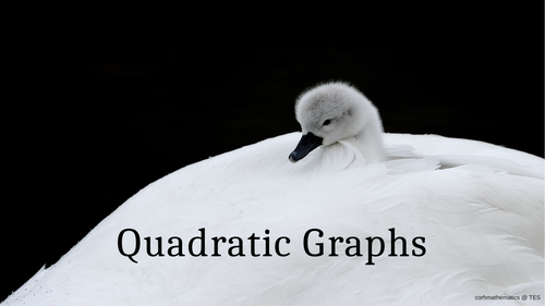 Quadratic Graphs Presentation