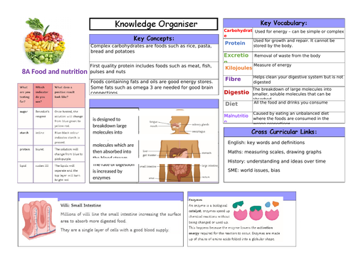 Knowledge organisers for year 8 science