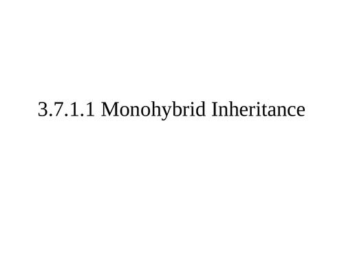 AQA A Level Biology Monohybrid inheritance