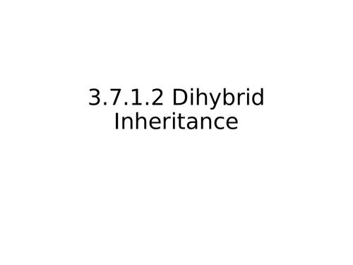 AQA A Level Biology Dihybrid inheritance