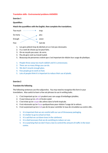 Environment: GCSE French translation skills