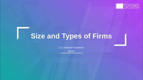 Size and Types of Firms: A Level Economics