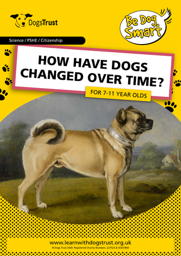 How Have Dogs Changed Over Time?