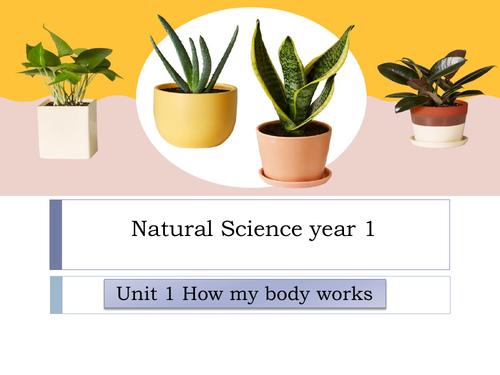 Natural science year 1