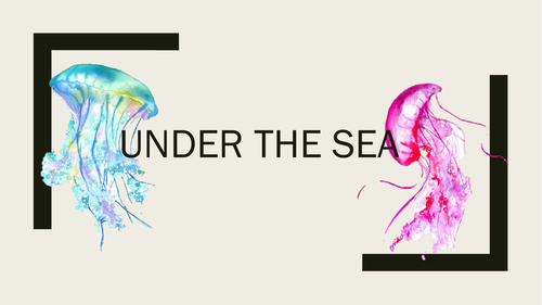 Under the sea - recycle project