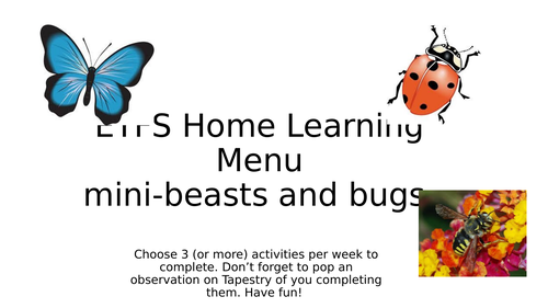 EYFS Mini beasts bugs insects  home learning topic project early years school closure minibeasts