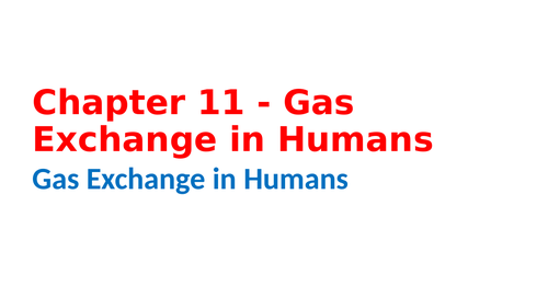 IGCSE Biology Chapter 11 - Gas Exchange in Humans